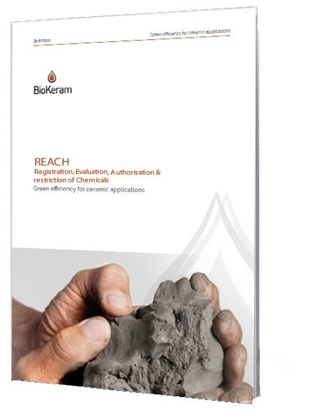 REACH EBOOK.jpg